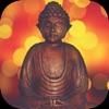 Nhạc Thiền - Tĩnh Tâm - An Nhiên Tự Tại