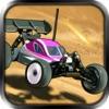 RC越野車賽車 -  越野版