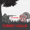 Turkey Calls App for Hunting anatolia turkey map