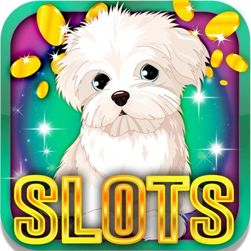 Bulldog's Slot Machine: Play with the cute dog iOS App