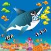 Shark Journey