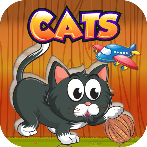 Funny kitten Puzzle for Girl - Pre K Education iOS App