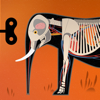 Tinybop Inc. - Mammals by Tinybop  artwork