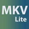 MKV to Any Lite extract mkv
