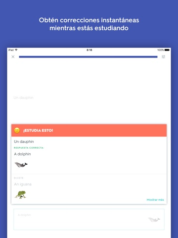 Quizlet Flashcards screenshot 2