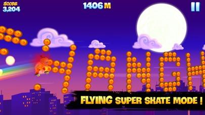 Screenshot of Skyline Skaters5