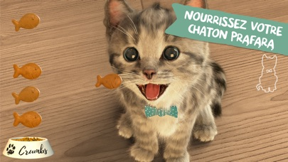 download Little Kitten - mon chat préféré apps 3