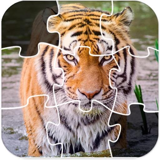 Special Jigsaw Challenge iOS App