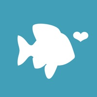POF - Best Dating App for Conversations