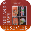 Dorland's Medical Dictionary, Elsevier