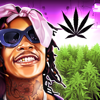Metamoki Inc. - Wiz Khalifa's Weed Farm  artwork
