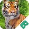 VR Safari Attraction Virtual Reality Jungle Pro