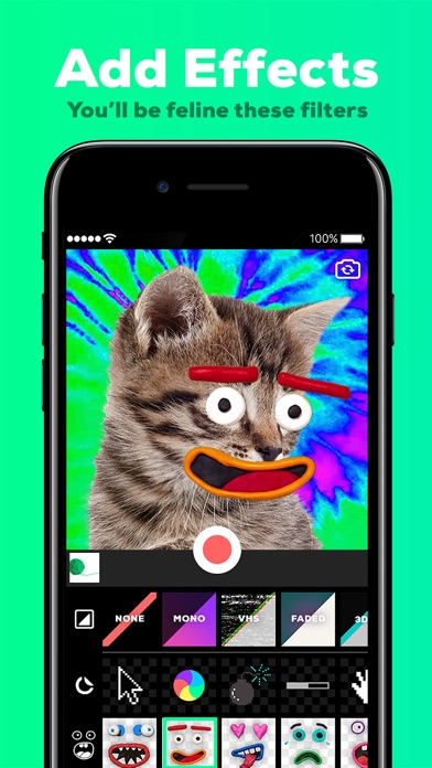Screenshots of GIPHY Cam. The GIF Creator for iPhone