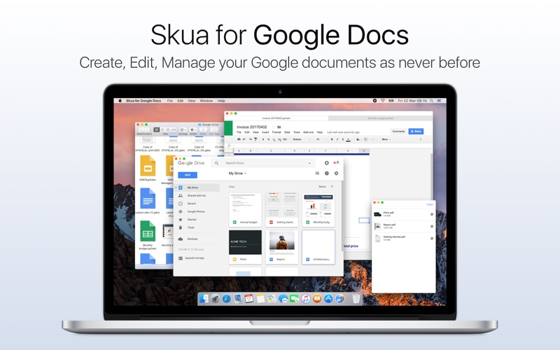 Skua for Google Docs app for Macs - download for MacOS from