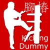 Wing Chun Kicking Dummy Form
