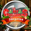 My Christmas Surprise