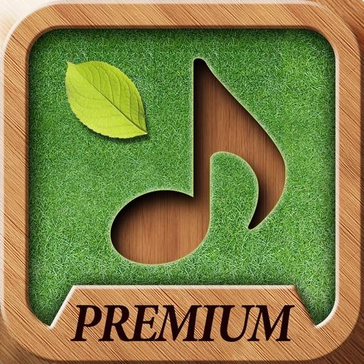 【轻松音效】Sound Massage Premium – 休息10分钟!