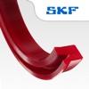 SKF Dichtungen