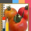 Artomaton お絵描き人工知能 - 動画も絵になる手描き風写真加工アプリ