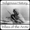Arctic Timeline timeline