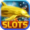 Dolphin Casino Slot Frenzy