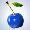 BluecherryB2B Wiki