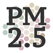 PM2.5 Monitor : Particulate Matter Forecast
