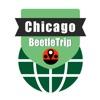 Chicago travel guide offline city metro train map