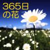 Li Guo - 365日の花 アートワーク
