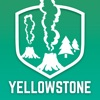 Yellowstone National Park Visitor Guide