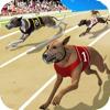 download Dog Racing Championship : Puppy Runner Simulator