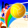 VTree LLC - Beach Volleyball 2017 illustration