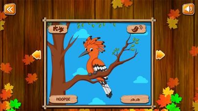 تعلم والعب: دنيا الطيورلقطة شاشة2