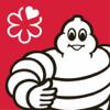 Michelin SG