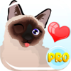 Siamese Cat Emoji – Stickers for Text Messages Pro Wiki