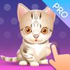 Play with Cats Pro - Katzenspielzeug und Spiele