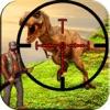 Shoot Aim Dino Hunt Forest 3D