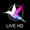 Live HD - Animals and Nature. Relaxing + Positive