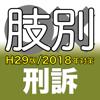 辰已の肢別本 H29版(2018年対策) 刑訴