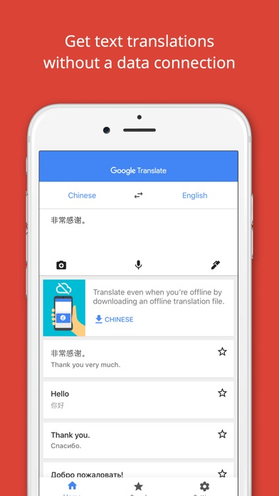 Google Translate Screenshots