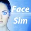 面部模擬 - FaceSim