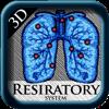 3D Respiratory System Pns
