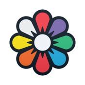 Recolor - Libro da colorare per adulti