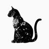 PicApp Inc. - DMM TELL(テラー)- 新感覚チャットストーリーアプリ アートワーク
