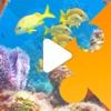 MoviePuzzles – Under the Sea