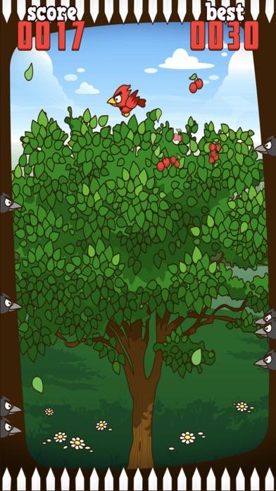 Red Bird - Cherry Challenge Screenshot 1