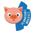 Pig's Forecast