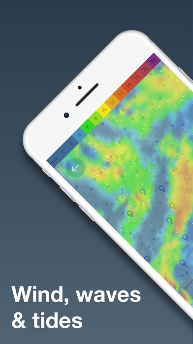 download WINDY - waves & wind forecast apps 1