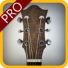 ギターの家庭教師のプロ - 曲、スケールやコードを学びます