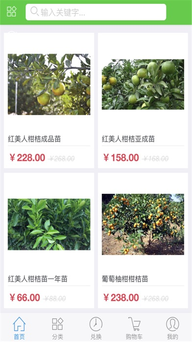 中国树苗网 screenshot 3